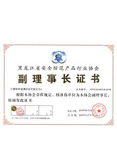 黑龙江省副理事长证书